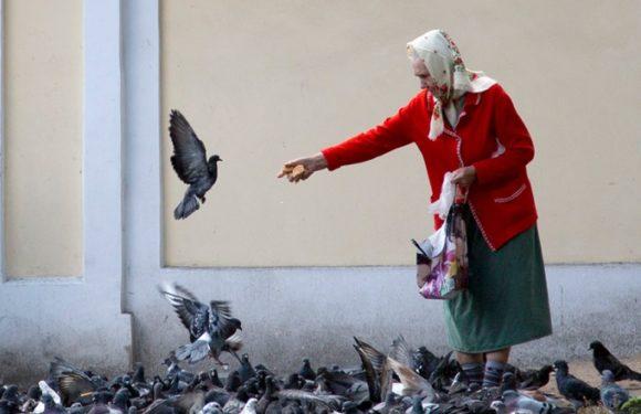 Минтруд заменит систему социальных доплат малоимущим пенсионерам