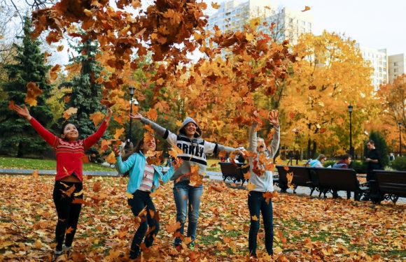 20 октября в Москве закончится бабье лето и погода резко ухудшится, когда похолодает