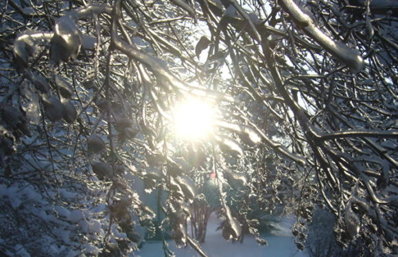 Самый короткий день в году сегодня 21.12.2018-день зимнего солнцестояния