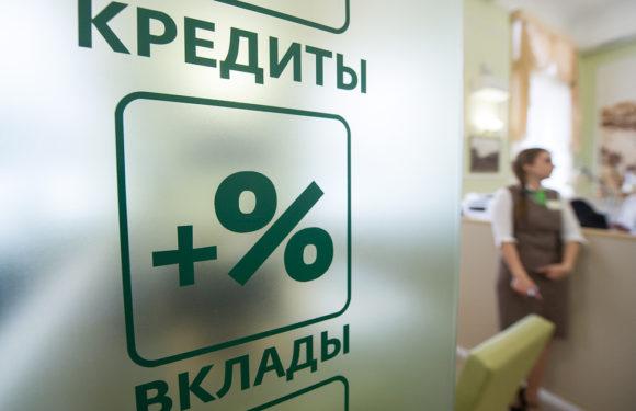 Программа льготного кредитования малого бизнеса по ставке 8,5% заработает в конце февраля